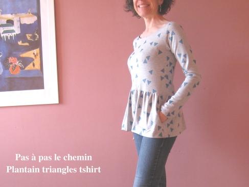 plantain triangles 3-4
